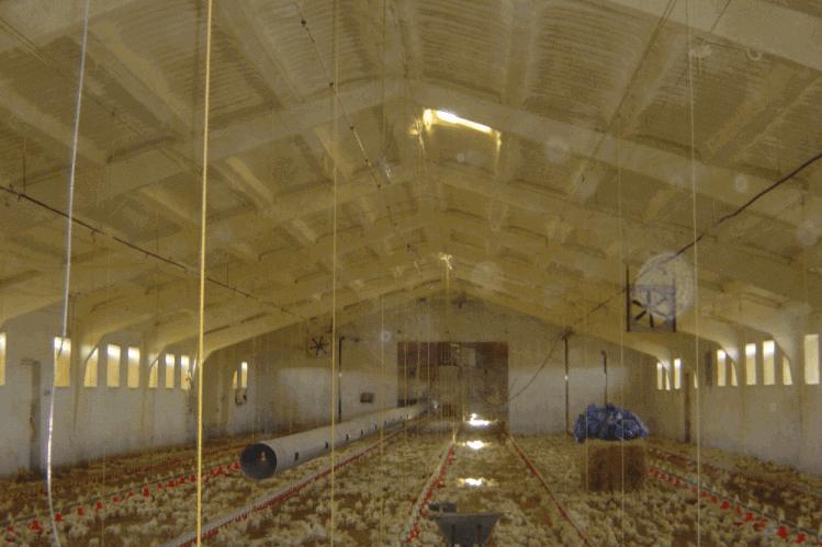 Rehabilitación de cubierta de chapa con poliuretano proyectado