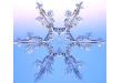 El papel del poliuretano en la cadena del frío